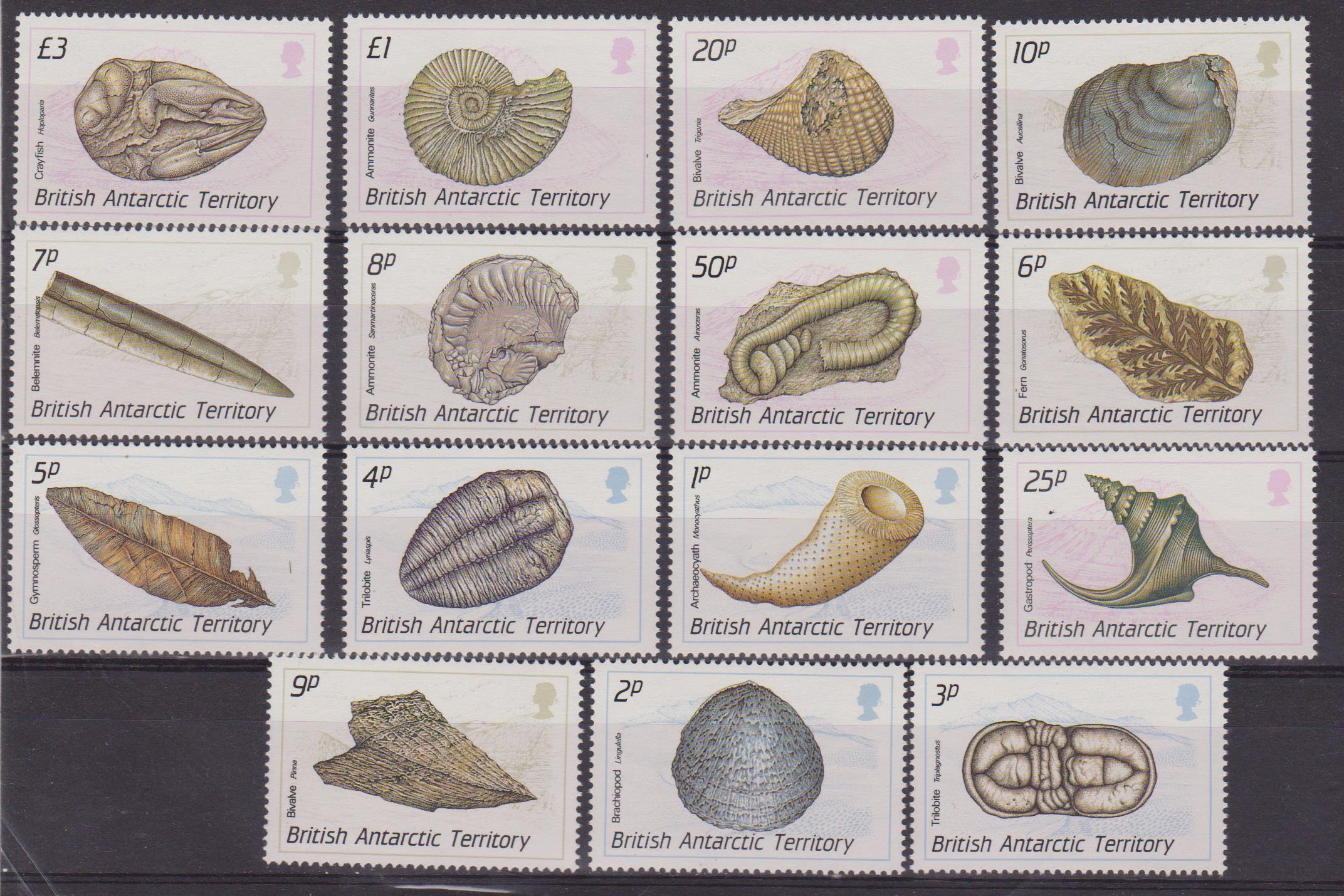 British antartic 176-90 001