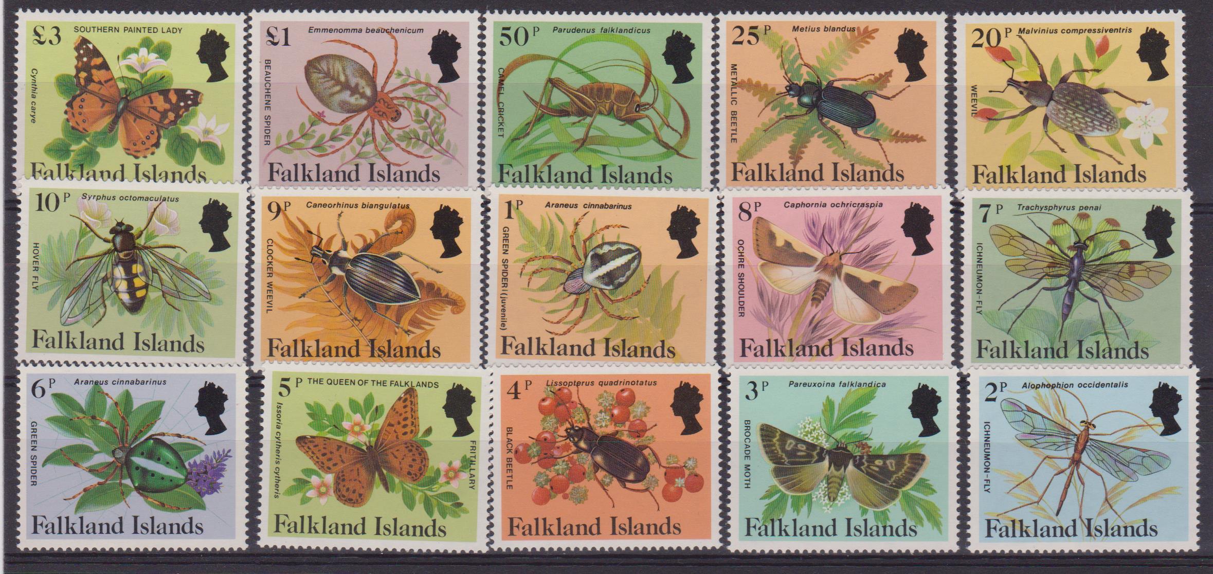 Falkland 403-17 001