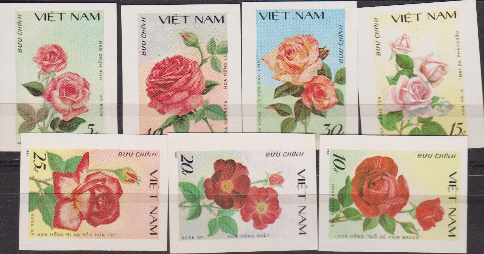 vietnam-008
